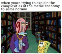 Meme Economy: when youre trying to explain the  complexities of the meme economy  to some normie  li