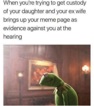 Brutal 👌🐦💉: When you're trying to get custody  of your daughter and your ex wife  brings up your meme page as  evidence against you at the  hearing Brutal 👌🐦💉
