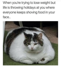 in-your-face: When you're trying to lose weight but  life is throwing holidays at you where  everyone keeps shoving food in your  face,