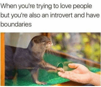Introvert, Love, and Can: When you're trying to love people  but you're also an introvert and have  boundaries I can relate to this. via /r/wholesomememes https://ift.tt/2SFS2vT