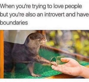 Dank, Introvert, and Love: When you're trying to love people  but you're also an introvert and have  boundaries meirl by 9w_lf9 MORE MEMES