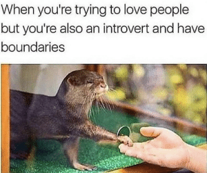 Dank, Introvert, and Love: When you're trying to love people  but you're also an introvert and have  boundaries Meirl by Hitlerism MORE MEMES