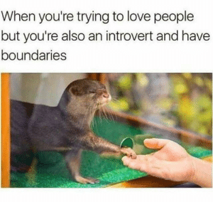 Introvert, Love, and Thing: When you're trying to love people  but you're also an introvert and have  boundaries No caption needed. Cutest darn thing