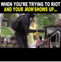 Memes, Riot, and Video: WHEN YOU'RE TRYING TO RIOT  AND YOUR MOM SHOWS UP  WMAR  DCStateśman.co This video will never get old. @drunkamerica . Credits: @the_typical_liberal ---------- Check out our store DrunkAmerica.com ---------- Follow our pages! 🇺🇸 @drunkamerica @ragingpatriots ---------- conservative republican maga presidentrump makeamericagreatagain nobama trumptrain trump2017 saturdaysarefortheboy merica usa military supportourtroops thinblueline backtheblue