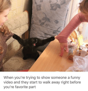 Funny, Video, and MeIRL: When you're trying to show someone a funny  video and they start to walk away right before  you're favorite part Meirl