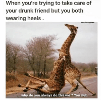 Get it together Becky @no_fucksgiven: When you're trying to take care of  your drunk friend but you both  wearing heels  Ono fucksgliven  why do you always do this me ? You slut. Get it together Becky @no_fucksgiven
