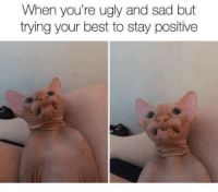 Ugly, Best, and Sad: When you're ugly and sad but  trying your best to stay positive Basically me 24/7