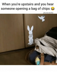 Memes, 🤖, and Chips: When you're upstairs and you hear  someone opening a bag of chips  @fuckersbelike 😂 😂 😂 Credit : picostaram