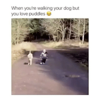 Love, Dog, and You: When you're walking your dog but  you love puddles Me