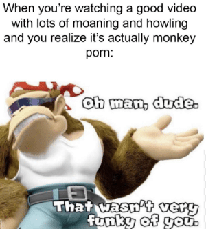 Dude, Good, and Monkey: When you're watching a good video  with lots of moaning and howling  and you realize it's actually monkey  porn:  Oh man, dude.  That wasnPt_very  funky of go Funky Kong does not approve
