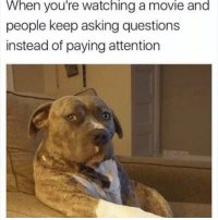 Stfu!!! 😡 Follow @puro_jajaja: When you're watching a movie and  people keep asking questions  instead of paying attention Stfu!!! 😡 Follow @puro_jajaja