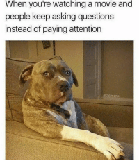 Funny, Love, and Memes: When you're watching a movie and  people keep asking questions  instead of paying attention  @dabmoms If you can relate you'll love @funny 😂