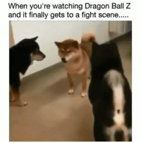 Funny, Tbt, and Dragon Ball Z: When you're watching Dragon Ball Z  and it finally gets to a fight scene..... 😂😂🎯 funniest15 viralcypher funniest15seconds tbt dragonballz Www.viralcypher.com