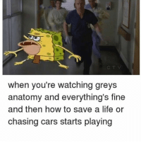 Cars, Life, and Memes: when you're watching greys  anatomy and everything's fine  and then how to save a life or  chasing cars starts playing 😭😭😭 greysanatomy