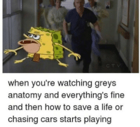 Cars, Life, and Memes: when you're watching greys  anatomy and everything's fine  and then how to save a life or  chasing cars starts playing https://t.co/UABXLmP0xt