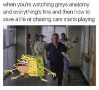 Cars, Life, and Memes: when you're watching greys anatomy  and everything's fine and then how to  save a life or chasing cars starts playing  CTV accurate 😂 #GreysAnatomy https://t.co/coCl646ZTU