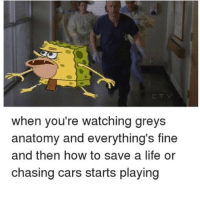 Memes, Grey's Anatomy, and Chase: when you're watching greys  anatomy and everythings fine  and then how to save a life or  chasing cars starts playing accurate af GreysAnatomy