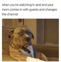 when you're watching tv and and your  mom comes in with guests and changes  the channel  dabmoms How rude!
