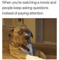 When you're watchinga movie and  people keep asking questions  instead of paying attention  adabmoms How about we all find out what happens together? smh Via @dabmoms
