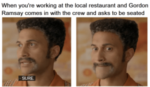 Gordon Ramsay, Restaurant, and The Crew: When you're working at the local restaurant and Gordon  Ramsay comes in with the crew and asks to be seated  SURE Hey, ma, Im on TV!