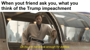 It really do be like that: When yout friend ask you, what you  think of the Trump impeachment  Oh no, I'm not brave enough for politics. It really do be like that
