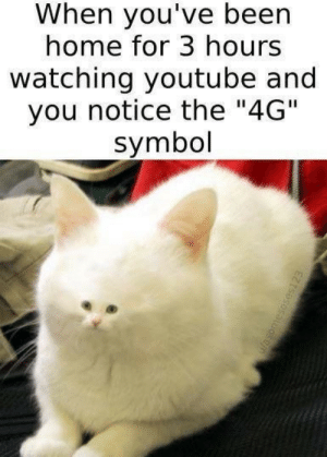 """youtube.com, Home, and Been: When you've been  home for 3 hours  watching youtube and  you notice the """"4G""""  symbol"""