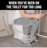 9gag, Memes, and Phone: WHEN YOU'VE BEEN ON  THE TOILET FOR TO0 LONG 90% using the phone, 10% actually using the toilet. - bathroom toilet 9gag