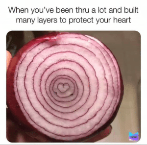 Onions have layers: When you've been thru a lot and built  many layers to protect your heart  MEMES Onions have layers