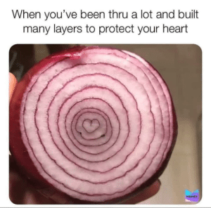 It's an onion calm down: When you've been thru a lot and built  many layers to protect your heart  MEMES It's an onion calm down