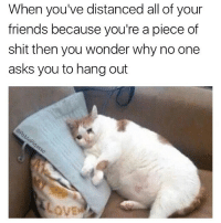 Memes, Piece of Shit, and 🤖: When you've distanced all of your  friends because you're a piece of  shit then you wonder why no one  asks you to hang out FOLLOW (@pablopiqasso) FOR MORE FUNNY AF MEMES