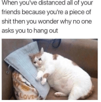 Memes, 🤖, and A-Piece-Of-Shit: When you've distanced all of your  friends because you're a piece of  shit then you wonder why no one  asks you to hang out ITS CO CUTEEE