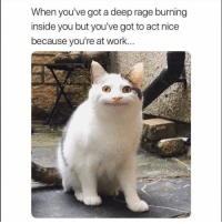 Funny, Work, and Nice: When you've got a deep rage burning  inside you but you've got to act nice  because you're at work. 😳
