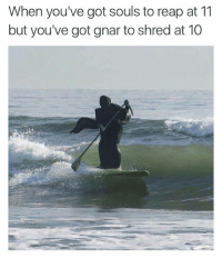 Memes, 🤖, and Got: When you've got souls to reap at 11  but you've got gnar to shred at 10 🌊🏄🏿🌊🏄🏿