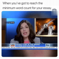 Fire, Funny, and News: When you've got to reach the  minimum word count for your essay.  LIVE  NEWS  DEADLY FIRE IN THE BRONX  0 FOUND DEAD IN BUILDING 😂😂