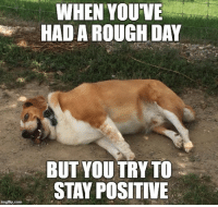 Rough, Com, and Day: WHEN YOUVE  HAD A ROUGH DAY  BUT YOU TRY TO  STAY POSITIVE  imgflip.com <p>A ruff day&hellip;</p>