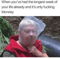 Fucking, Instagram, and Life: When you've had the longest week of  your life already and it's only fucking  Monday @coupleshabit is the 1 quotes page on instagram!💕💄🌈