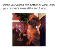 Funny, Stfu, and Wine: When you've had two bottles of wine...and  your cousin's jokes still aren't funny... <p>STFU Sharon!</p>