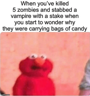 Wait a second…: When you've killed  5 zombies and stabbed  vampire with a stake when  you start to wonder why  they were carrying bags of candy  imgflip.com Wait a second…