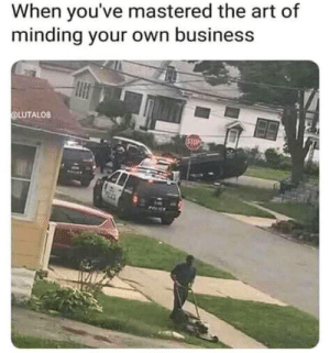 Master of mind your own business via /r/funny https://ift.tt/2NGpbEz: When you've mastered the art of  minding your own business  OLUTALO8 Master of mind your own business via /r/funny https://ift.tt/2NGpbEz