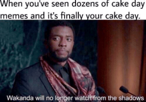 THIS time baby: When you've seen dozens of cake day  memes and it's finally your cake day.  Wakanda will no longer watch from the shadows THIS time baby