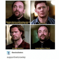 Beautiful, Memes, and Squirrel: Whenever there's a world-ending erisis at  hand, I know where to place my bets.  it's on you  [you big, beautiful  lumbering piles of flannel  thewincheters  supportive!crowley I miss Crowley sm 😩😢 - spn spncw spnfans spnfan spnfamily spnfandom supernatural supernaturalcw supernaturalfans supernaturalfan supernaturalfamily supernaturalfandom destiel destielforever j2 brothers winchester akf yana lyf jensenackles jaredpadalecki deanwinchester squirrel samwinchester moose crowley marksheppard