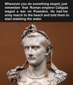 epicjohndoe:  Caligula Wasn't The Sharpest Tool In The Shed: Whenever you do something stupid, just  remember that Roman emperor Caligula  waged a war on Poseidon. He had his  army march to the beach and told them to  start stabbing the water. epicjohndoe:  Caligula Wasn't The Sharpest Tool In The Shed