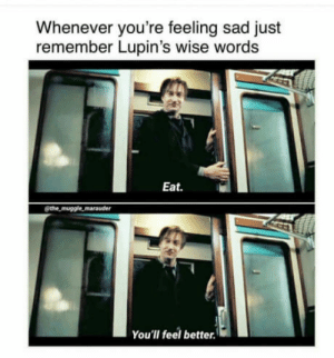 Sad, Lupin, and Remember: Whenever you're feeling sad just  remember Lupin's wise words  Eat.  @the muggle marauder  You'lI feel better. Remember Lupin's words