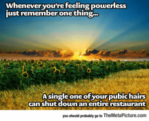 lolzandtrollz:  Feeling Powerless? Just Remember: wheneveryou're feeling powerless  just remember one thing.  Asingle one of your pubic hairs  canshut downanentire restaurant  you should probably go to TheMetaPicture.com lolzandtrollz:  Feeling Powerless? Just Remember