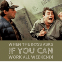Friday, Reddit, and Work: WHENTHE BOSS ASKS  WORK ALL WEEKEND