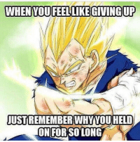 Gym, Quite, and Dbz: WHENYOUFEELLIKE GIVINGUP  USTREMEMBERWHYOUHELD  ON FOR SO LONG Nothing quite like DBZ motivation 🔥