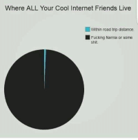 internet friends: Where ALL Your Cool Internet Friends Live  Within road trip distance.  Fucking Narnia or some  shit.