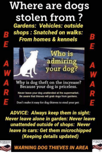 Advice, Being Alone, and Cars: Where are dogs  stolen from?  Gardens: Vehicles: outside  shops: Snatched on walks:  From homes & kennels  Who is  admiring  your dog? '   Why is dog theft on the increase?  Because your dog is priceless.  Never leave your dog unattended at the supermarket.  Be aware that thieves will grab dogs from gardens.  Don't make it easy for dog thieves to steal your pet  ADVICE: Always keep them in sight:  Never leave alone in garden: Never leave  unattended outside of shops: Never  leave in cars: Get them microchipped  (Keeping details updated)  WARNING DOG THIEVES IN AREA