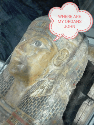 When john visit you at the museum centuries after the imbalsamation.: WHERE ARE  MY ORGANS  JOHN When john visit you at the museum centuries after the imbalsamation.