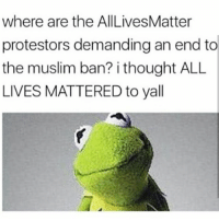 All Lives Matter, All Lives Matter, and Memes: where are the AllLivesMatter  protestors demanding an end to  the muslim ban? i thought ALL  LIVES MATTERED to yall Ol' Hypocritical Asses 🐸☕😂😂😂😂 pettypost pettyastheycome straightclownin hegotjokes jokesfordays itsjustjokespeople itsfunnytome funnyisfunny randomhumor donaldtrump